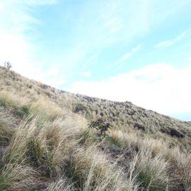 Bukit Batu Gundul Buleleng: Enjoy the Beauty of Nature Above The Rock