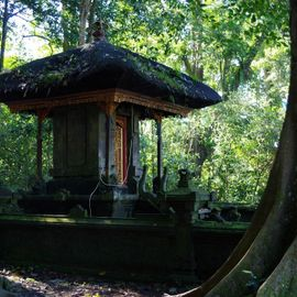 Luhur Mekori Temple, A Holy Place in the Wilderness of Protected Forests