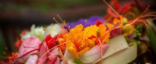 Majegau: The Rare Original Flora in Bali