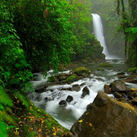Enjoy the Fresh Morning at Tukad Krisik Waterfall