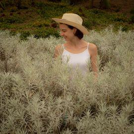 7 Most Beautiful Flower Gardens in Bali