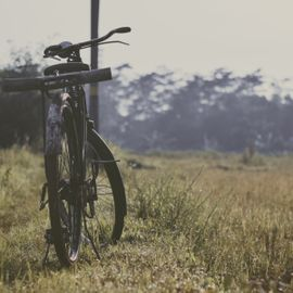 The Excitement of Cycling Around Ubud