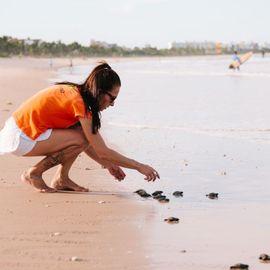 Observing Turtle Behavior at Serangan Turtle Conservation