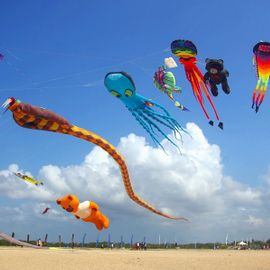 Sri Tanjung Kites Fly Beautifully in Denpasar Sky
