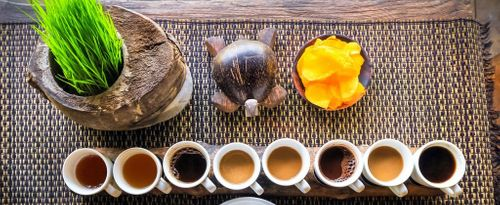 Facts Behind the Distinctive Aroma of Bali Pulina Coffee