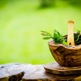 Herbal Plants from Bali That Will Nourish Our Body