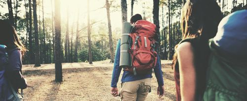 7 Tips Before Traveling in the Wild Nature