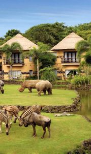 Enjoy Africa in Bali? Yes, You Can!
