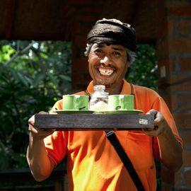Loloh Cemcem, A Typical Nutritious Drink in Penglipuran Village