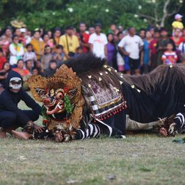 Ngelawang Barong Bangkung, Dancing Around the Village to Prevent Bad Luck
