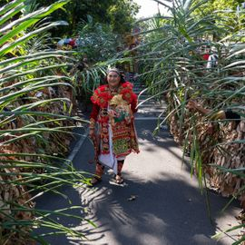 Baris Memedi, The Sacred Dance from Jatiluwih Village